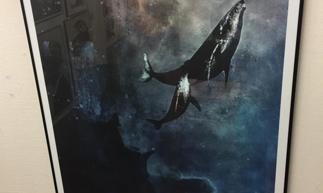 Urban art inter art for Alex cherry flying whales wall mural